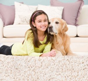 Pet Odor Removal in Beaver Valley