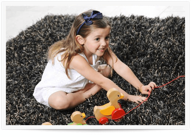 Area Rug Cleaning Service Beaver, PA
