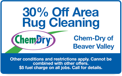 30% off area rug cleaning coupon
