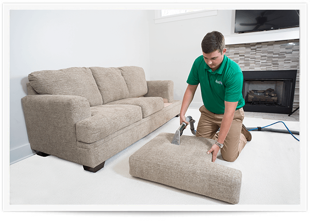 Upholstery Cleaning Service in Beaver