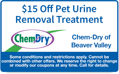 Buy 1 pet urine treatment get 1 half off with free blacklight inspection coupon